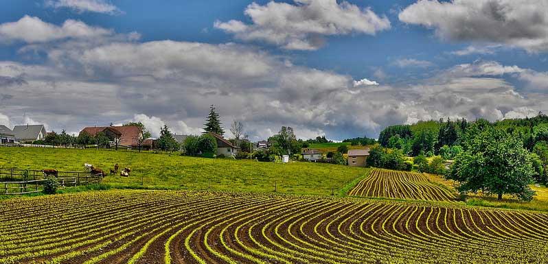 Village de Bellmund s/Bienne, canton de Berne, texture agricole